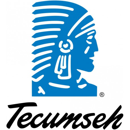 GROUPE TECUMSEH HP/MP AE4440YHR-LL 220V/1/50HZ R134A POE